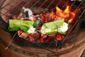 grilled-mozzarella_35258s