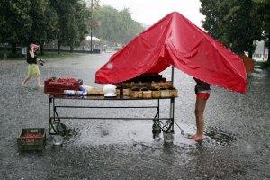 Strawberry-vendor-stands--018